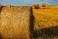 Strohballen auf einem abgeernteten Getreidefeld