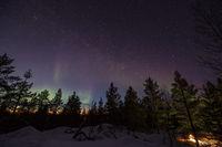 Nordlichter über einem Wald in den Bergen bei Inari, Finnland