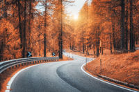 Beautiful winding mountain road in autumn forest at sunset