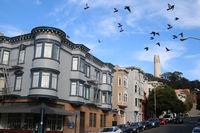 San Francisco, Coit Tower und Little Italy