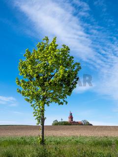 Baum und Leuchtturm in Bastorf.