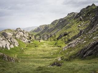 Hiking in a valley at mizen head cliffs in ireland