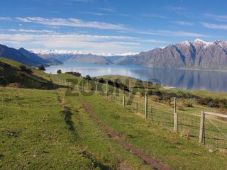 Rural landscape of New Zealand