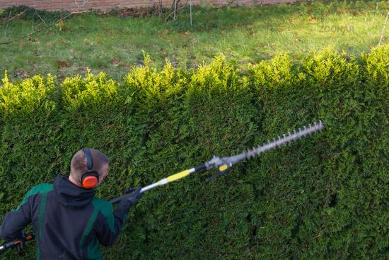 Gardener cuts a hedge