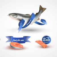 Set salmon . Fillet, steak and fish salmon isolated on white without blue ribbon