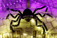 Halloween giant black spider in led lights web.