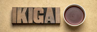 ikigai word - Japanese life purpose concept