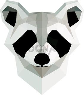 Low poly illustration. Raccoon