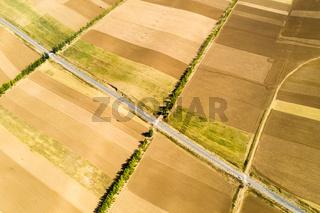 farmland in autumn sowing