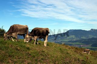 Bayrische Landschaft 032. Deutschland