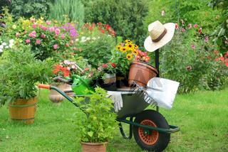 Garten 667