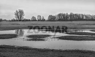 Landschaft am Buger Bodden