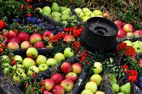 Wagenrad als Apfeldekoration
