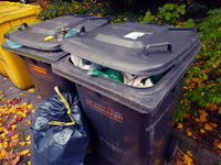 Bonn Germany, 12 November 2019: Trash dumpsters in the autumnal street