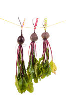 Shot of three hanging beet