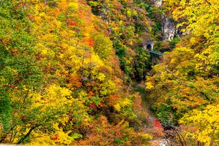 Beautiful autumn color at the Naruko Gorge