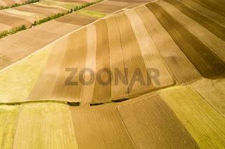 farmland texture background in autumn