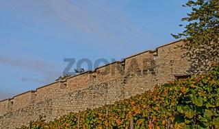 Festung Munot Schaffhausen
