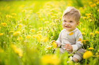 Portrait of adorable baby playing outdoor in the sunny dandelions field