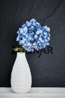 Blaue Hortensie in einer Vase