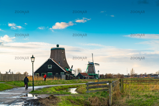 Beautiful landscape at Zaanse Schans Village with tradition dutch windmill after rain