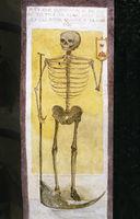 Tod, Sensenmann, Skelett