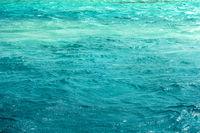 Wave ocean blue sea fresh Bermuda's amazing underwater marine life.