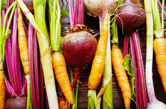 Vegetarian background of fresh organic beetroots green garlic and carrots on kitchen wooden rustic table