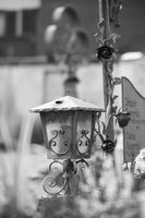 Candle / lantern at the cemetery, funeral, sorrow