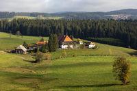 Unterfallengrundhof bei Gütenbach im Schwarzwald