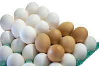 white  brown eggs on white isolated background
