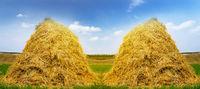 Agricultural landscape stack hay