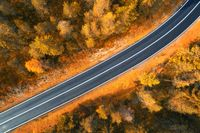 Aerial view of the road in autumn forest at sunset in Dolomites