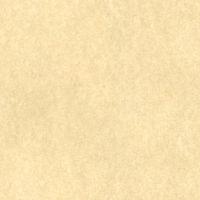 Beige Parchment Background