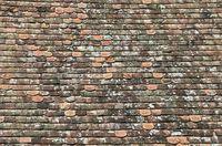 Dach aus alten Tondachschindeln mit Flechten bewachsen