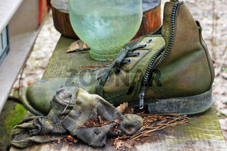 Rotten leather men's shoes covered with green mold