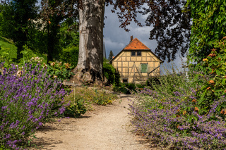 Schlosspark Blankenburg im Harz