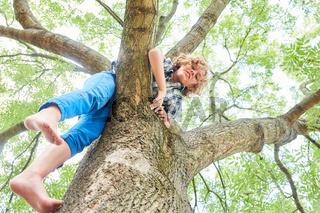 Junge klettert beim Spielen auf einen Baum