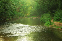 Flusslauf der Leine bei Friedland