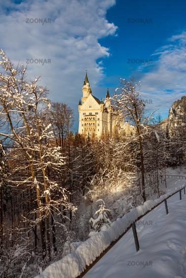 Neuschwanstein Castle in winter landscape. Germany