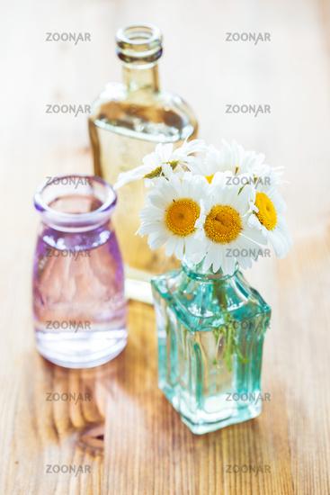 Chamomiles flowers