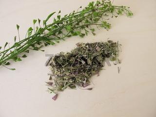 Getrocknetes Hirtentäschelkraut für Tee