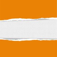 cOrangeTornPaper-10-c43-181111.eps