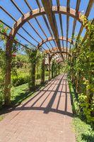 Stone brick passageway benath an arbor at a sunny garden wedding venue
