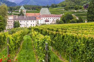 Kloster Neustift mit Weinbergen, Brixen, Italien, Monastery Neustift with vineyards, Brixen, Italy