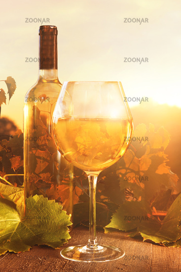 Glasse of white wine and bottle against vineyards