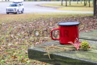 tea on a picnic table