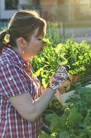 Woman working in a home vegetable garden