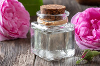 A bottle of rose essential oil with Rose de mai flowers