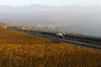 Schweizer Autobahn A 9 führt durch die Lavaux Weinberge bei Vevey am Genfersee,Schweiz